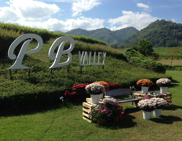 3.PB-Valley-Khao-Yai-Winery-5