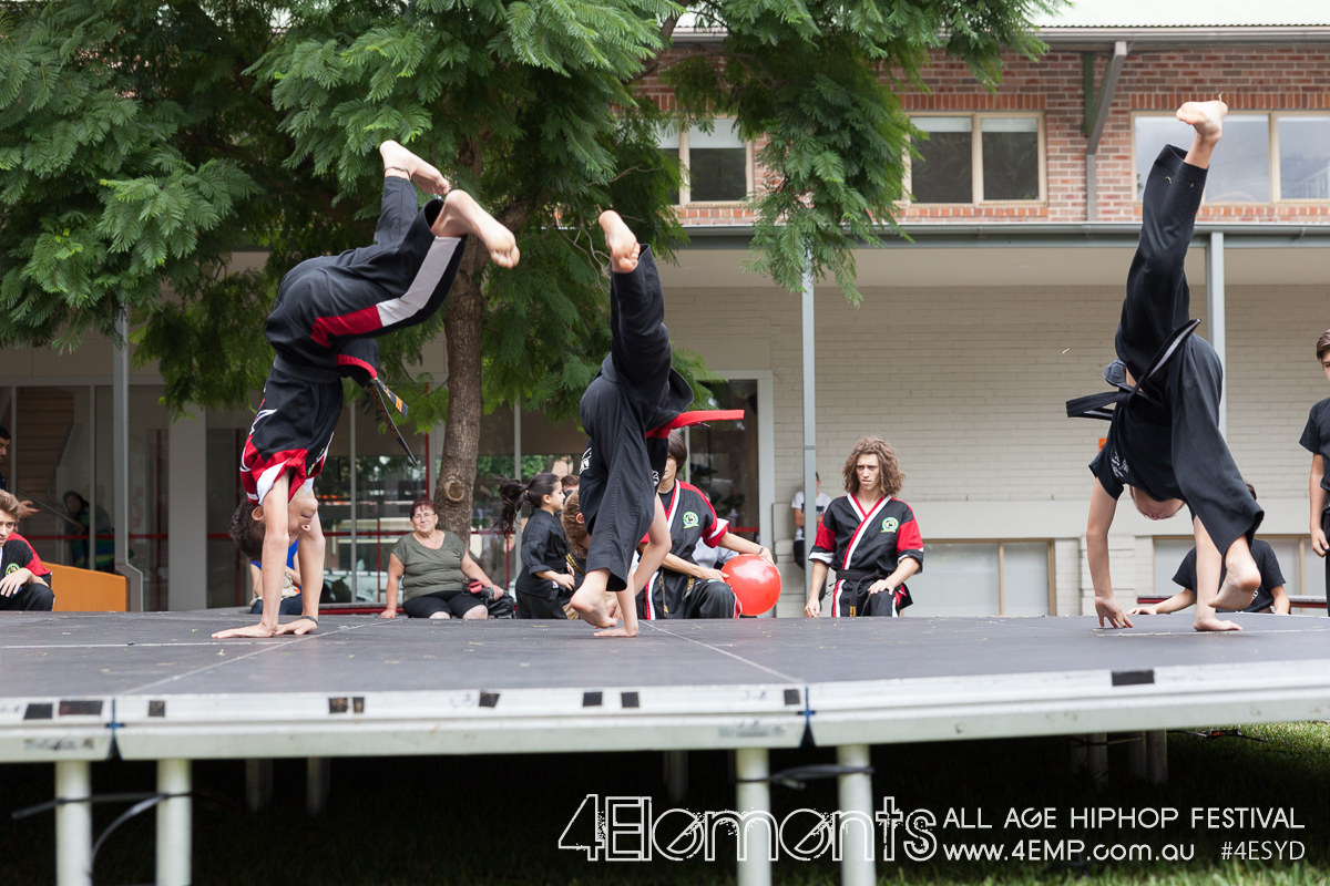 4Elements All Age HipHop Festival 2015 #4ESYD (176).jpg