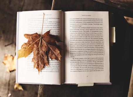 Momentos especiais de outubro e novembro