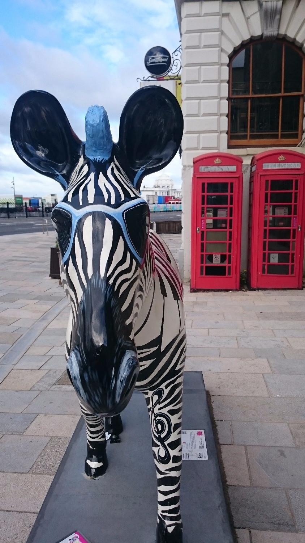 Southampton zebra walk