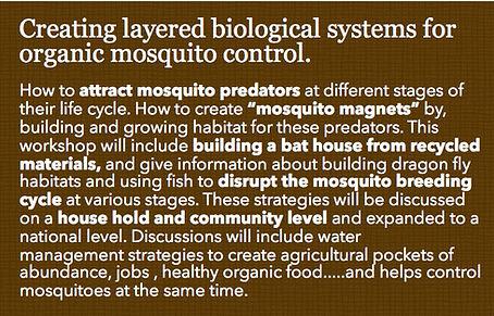 Mosquito control.jpg