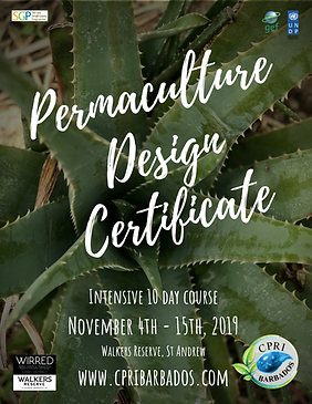 Copy of Permaculture Design Certificate.
