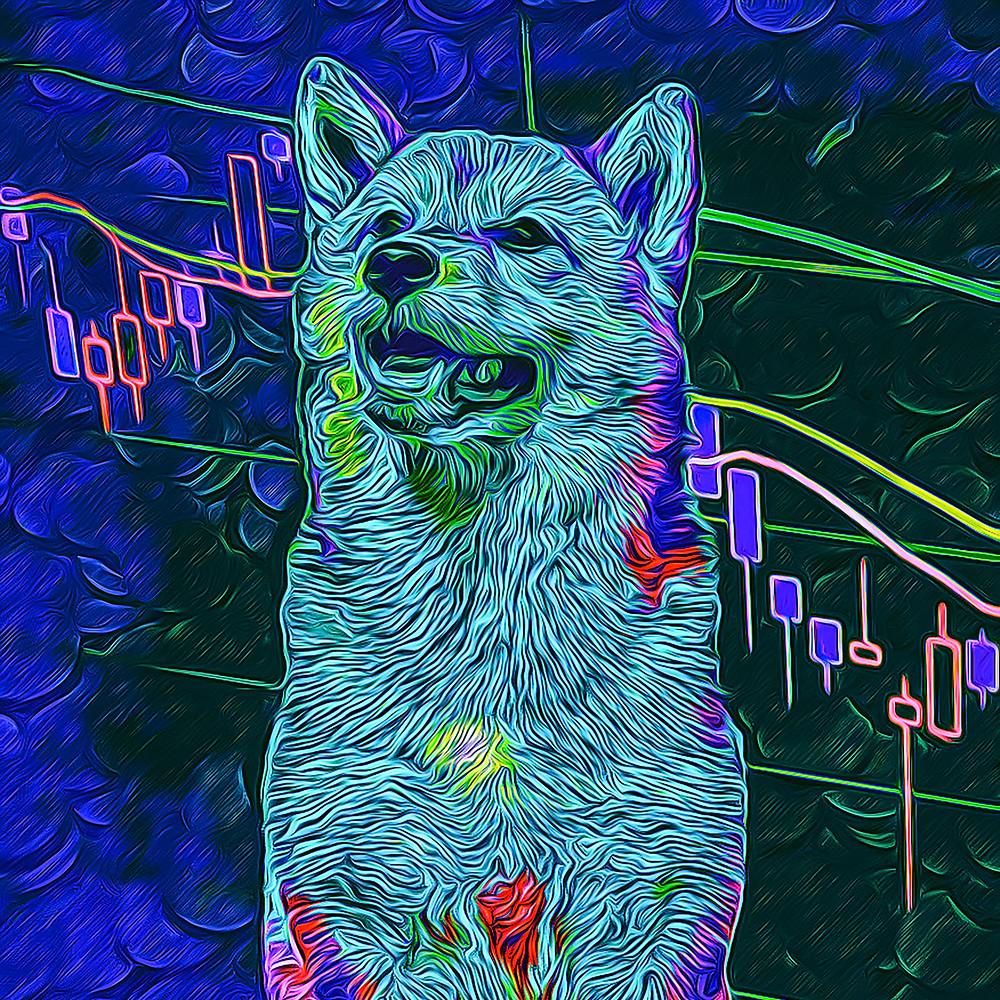 Doge Market No.33 - DocRico
