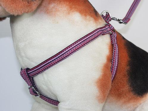 Haight Ashberry Dog Harness - Huckleberry - Medium