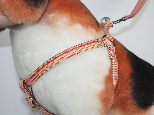 Haight Ashberry Dog Harness - Salmonberry - Medium