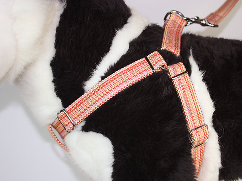 Haight Ashberry Re-purposed dog harness -Salmonberry Large