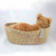 cat in the basket squrare cropping.jpg