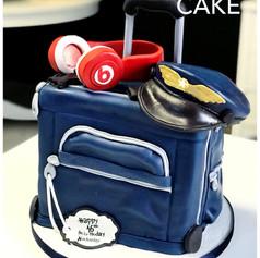 Pilots travelling cake