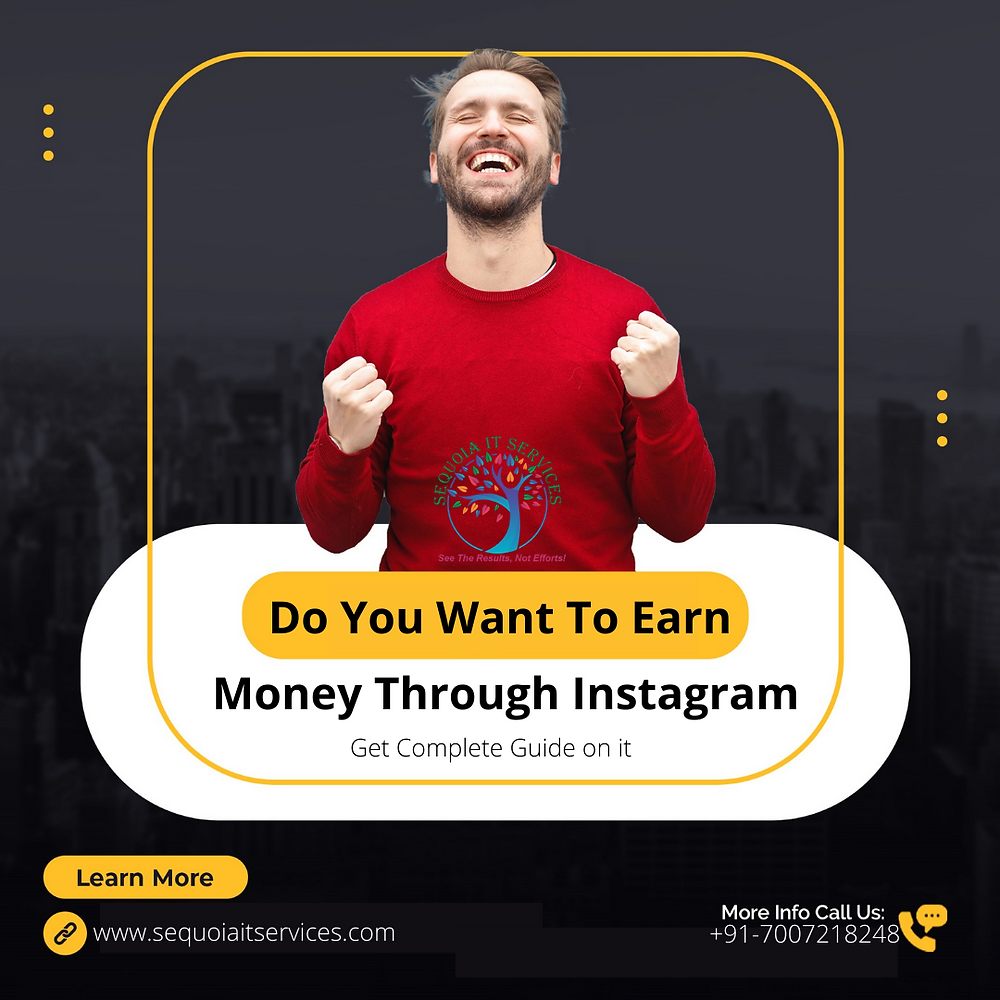 Do You Want To Earn Money Through Instagram