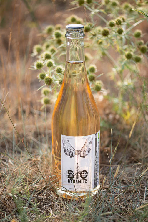 bouteilles mathouans-3.jpg