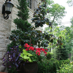 bailey flower pots.JPG