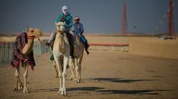 Al Dhafra Festival Camel Race