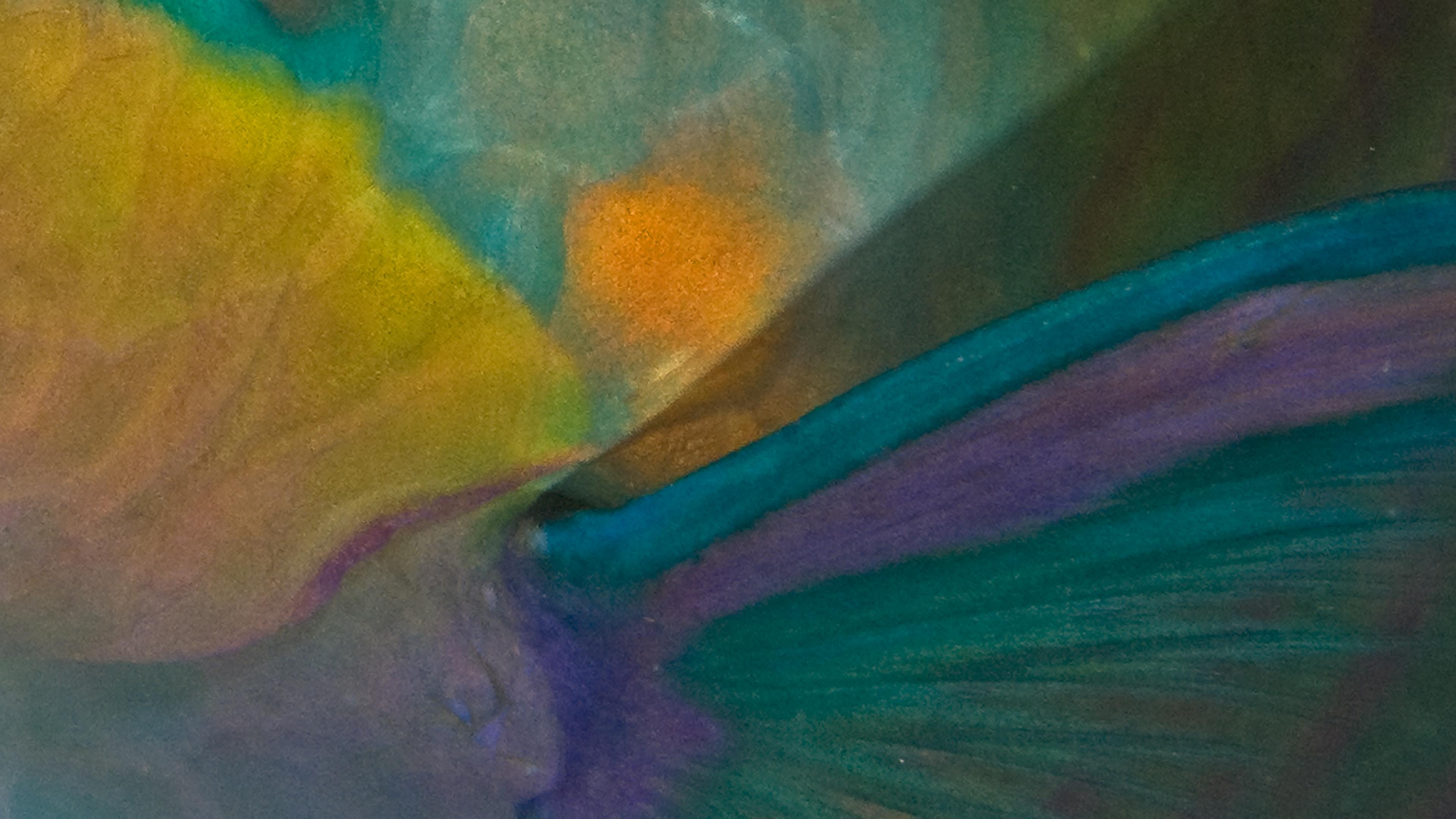 Parrotfish sleeping abstract