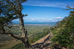 Cerro Dorotea Hike