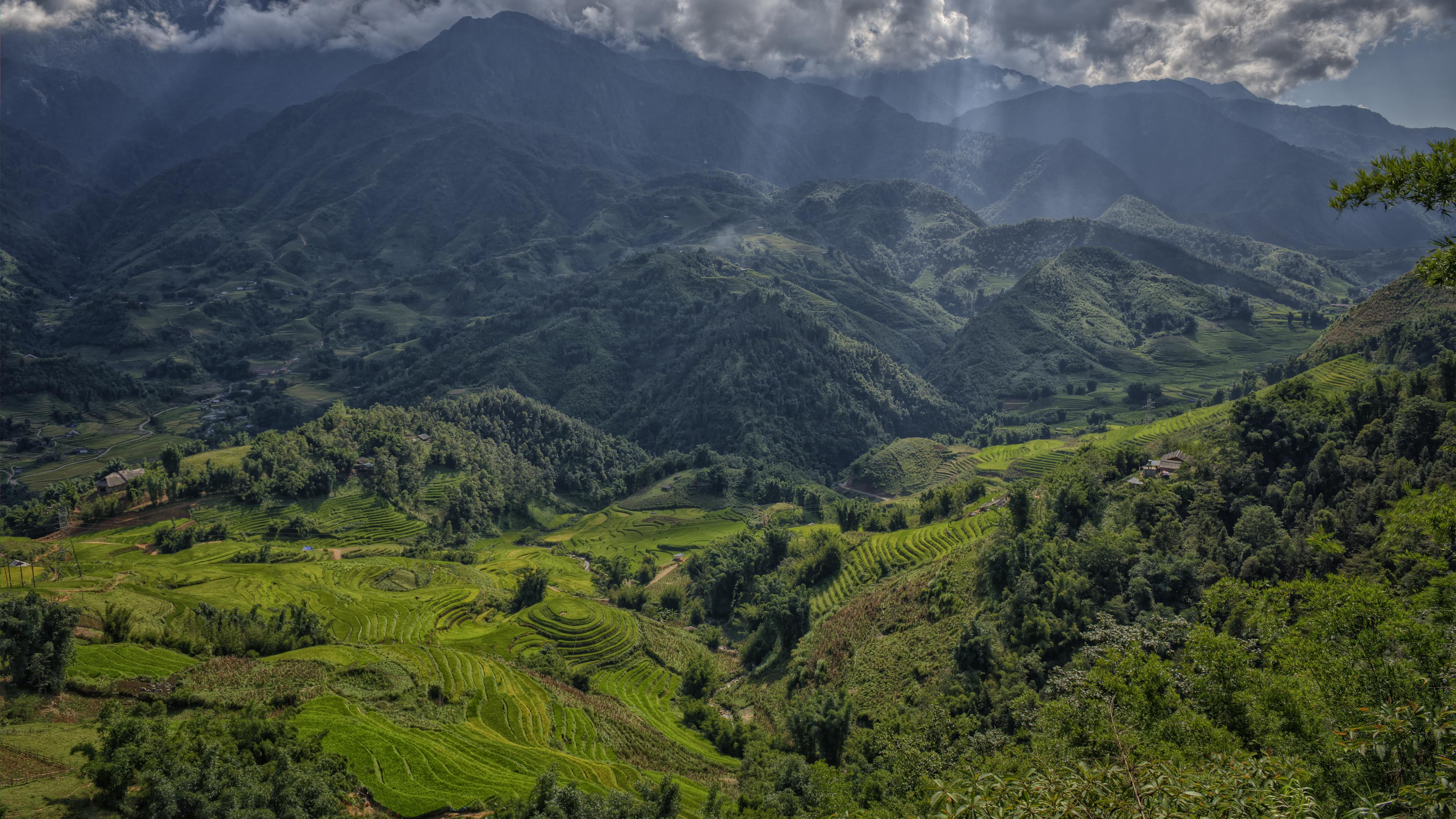 Lao Cai Rice Terraces
