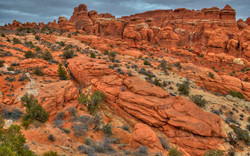 Fiery Furnace in Arches NP