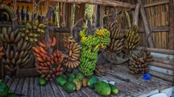 Many Bananas in Lake Manyara