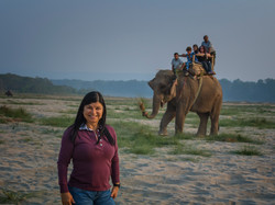 Safari in Chitwan