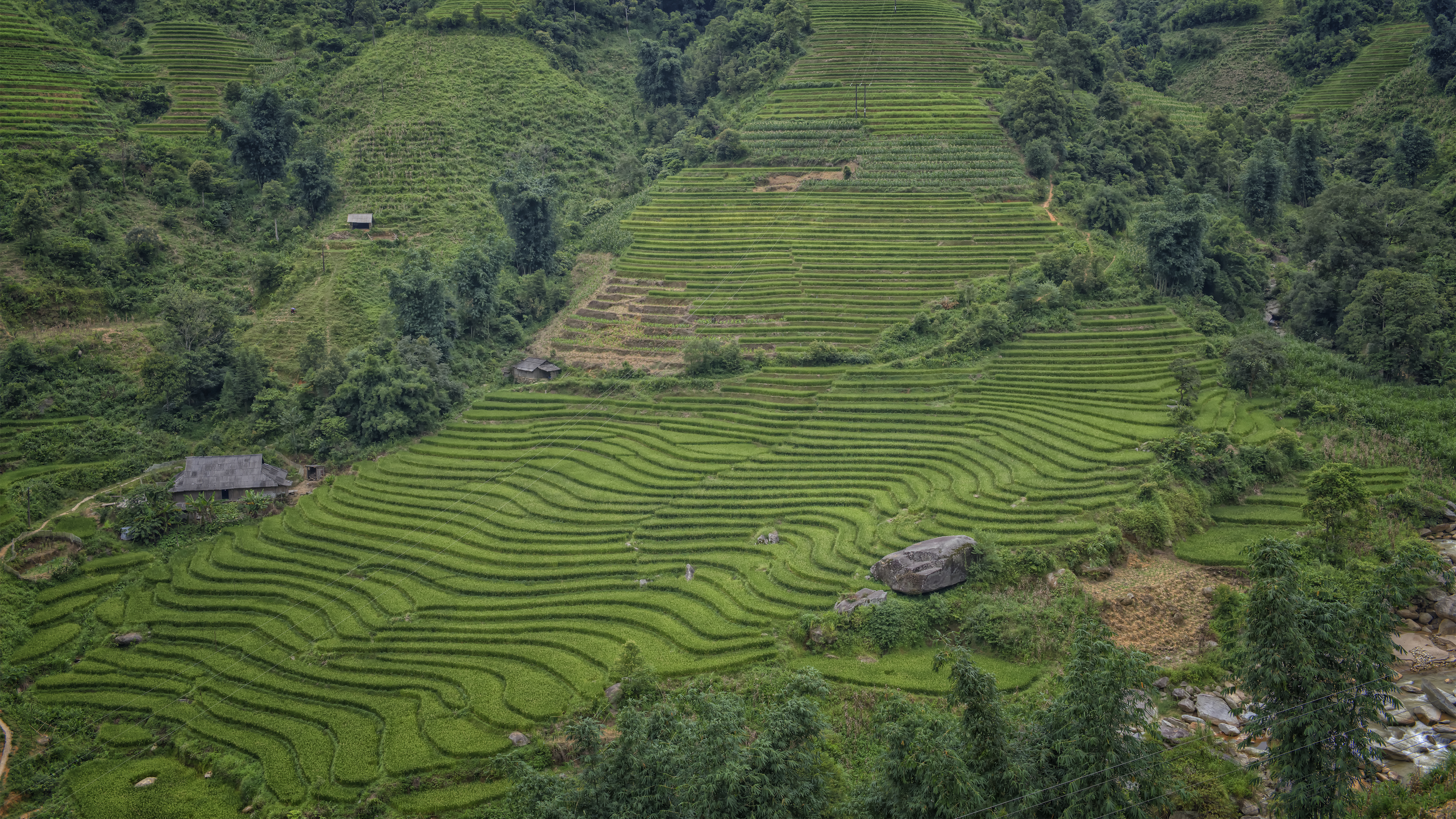 Beautiful Rice Terraces in Lao Cai