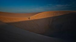 The Dune