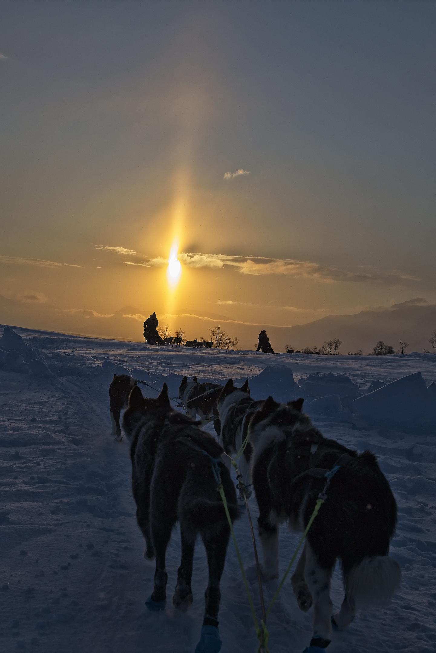 Sunrise in the Arctic Adventure