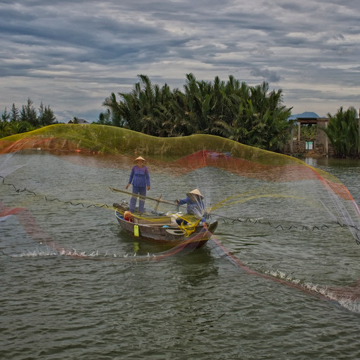 Net Fishing in Hoian, Vietnam