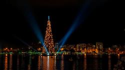 World's tallest floating Christmas tree