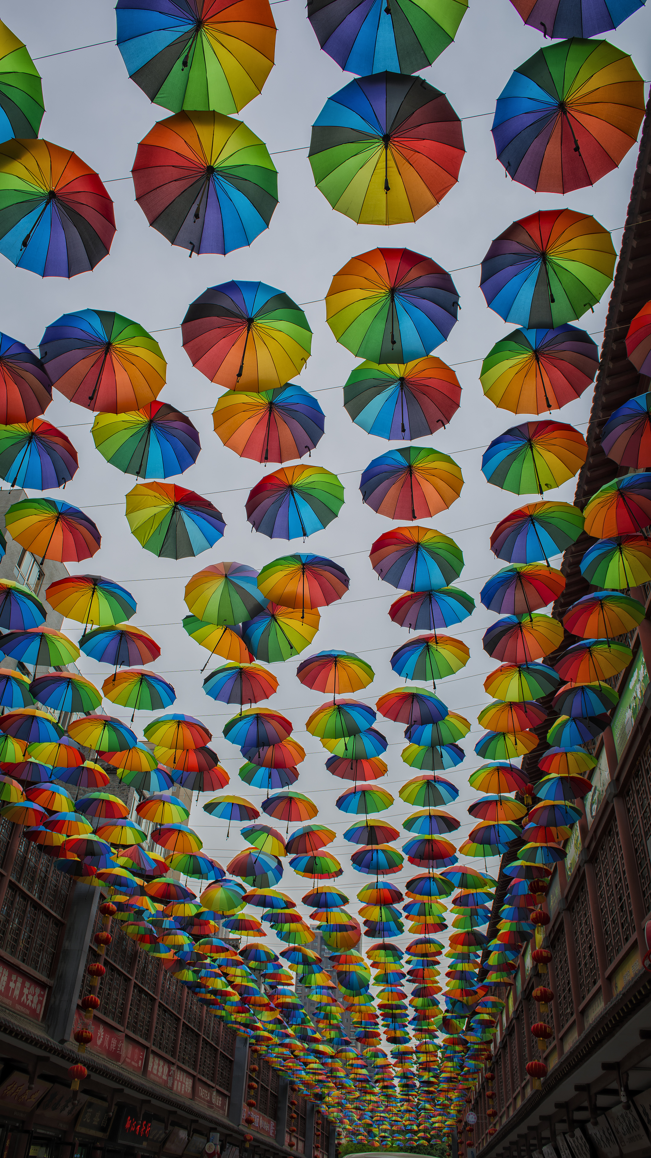 Umbrellas in Xian