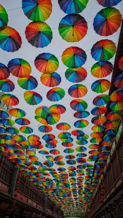 Umbrellas in Xian
