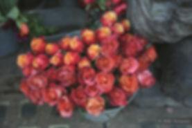 photographe reportage mariage bordeaux, reportage mariage, esoler photographie, photographe reportage mariage, photographe mariage bordeaux, photographe mariage gironde dordogne aquitaine