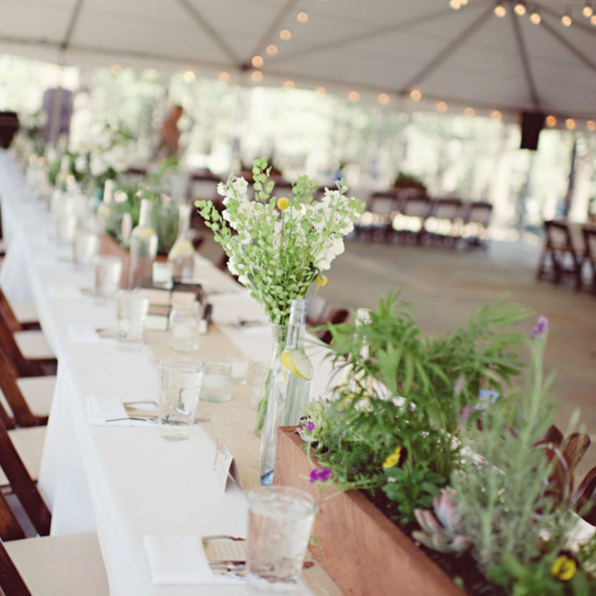 Wedding at Chalet View Lodge