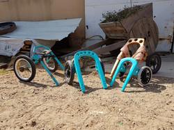 Alexitabull | כסאות גלגלים לכלבים