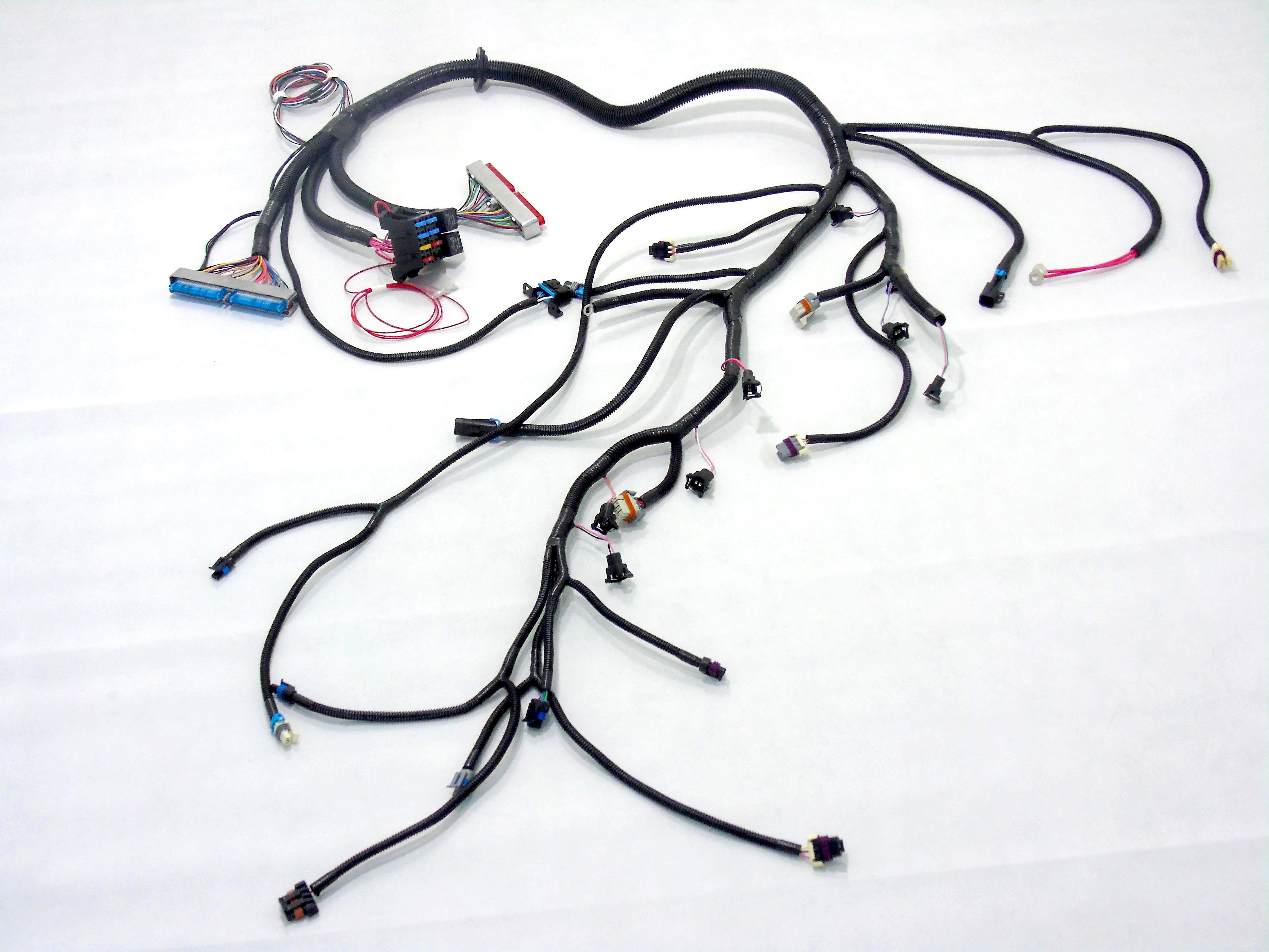 97 02 ls1 w t56 standalone wiring harness dbc lab rats 97 02 ls1 w t56 standalone wiring harness dbc