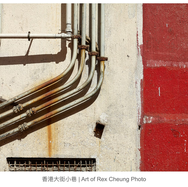 art of rex cheung photo00019.jpg