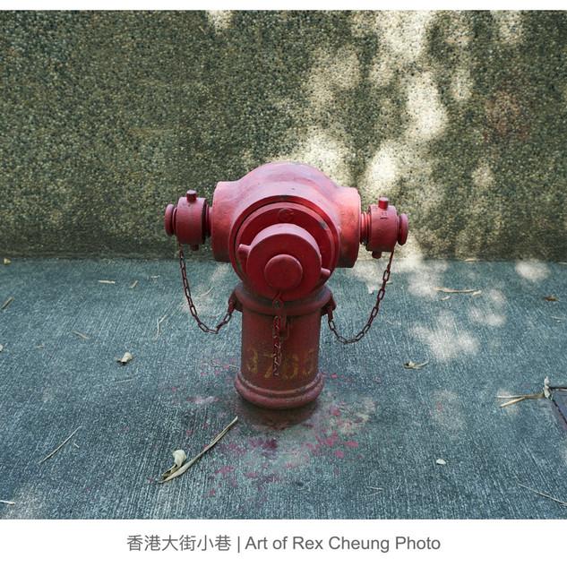 art of rex cheung photo00021.jpg