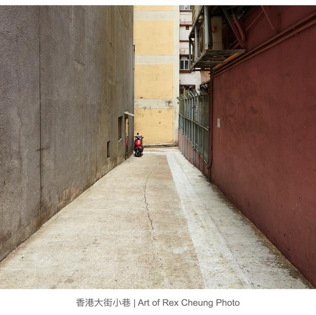 art of rex cheung photo00003.jpg