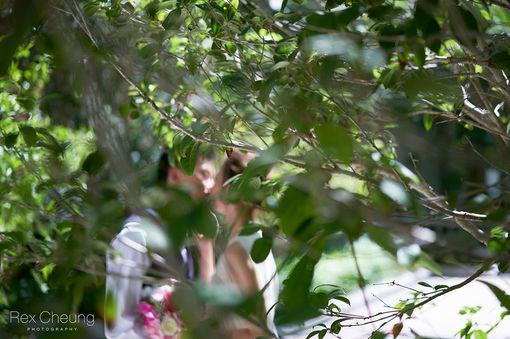 rex cheung photo engagement photo12.jpg