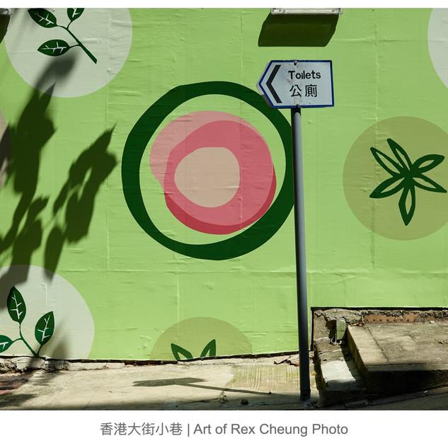 art of rex cheung photo00018.jpg