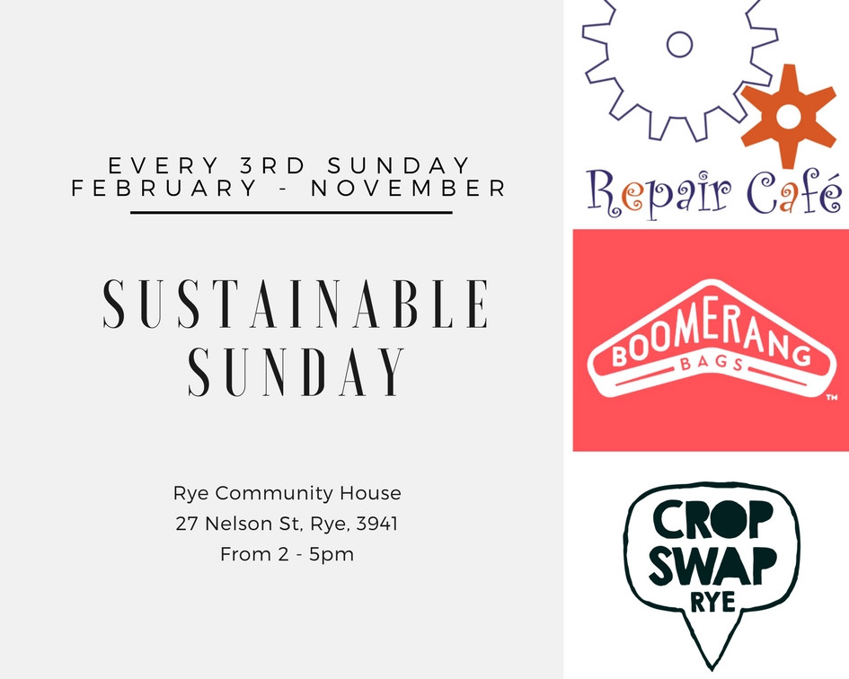 Sustainable Sunday, starting May 20th!
