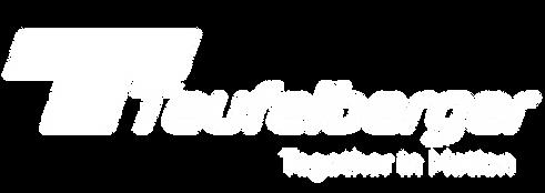 TB22378_TEUFELBERGER_Logo_white (1).png