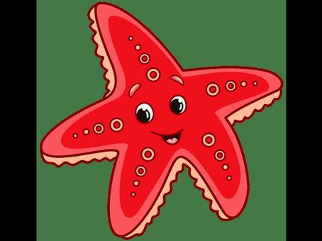 Starfish class welcome...