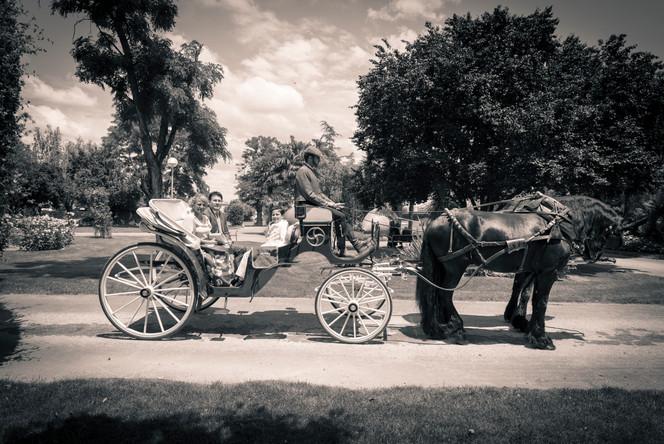 Fotografo de Comuniones en Torrejon de Ardoz