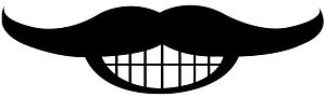 The Thin Mustache.jpg