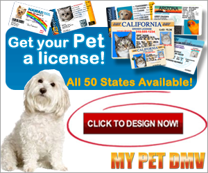 Pet DMV