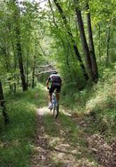 Mountainbike route Rouffignac-L'Herm