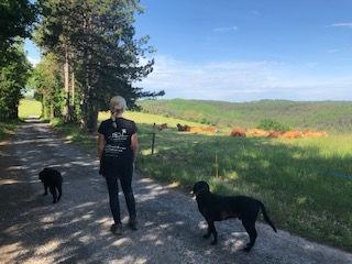 zondagse wandeling - Les Cabanes de Rouf