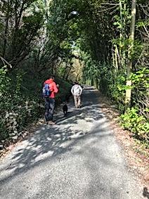 Wandeling in Journiac - Les Cabanes de R