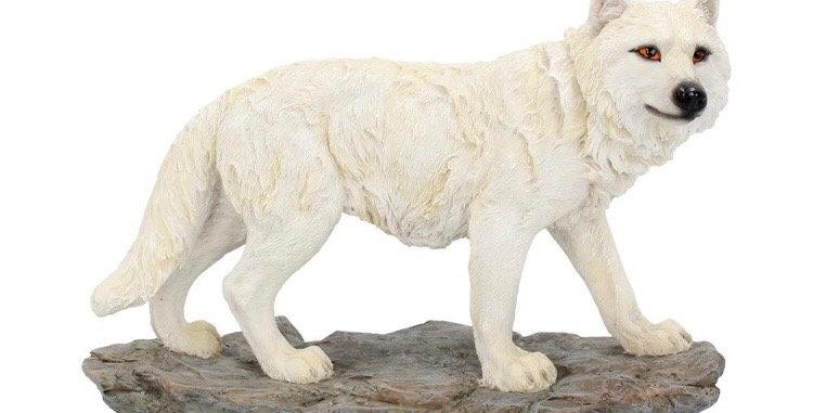 Mountain Watcher Wolf