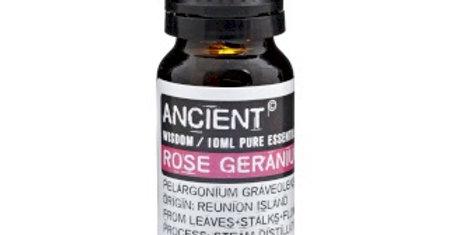 Rose Geranium Essential Oil