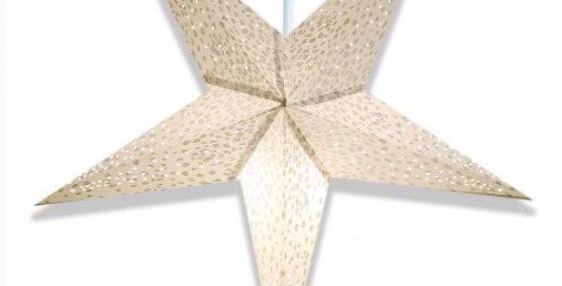 Snow Leopard Star Lantern